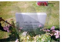 CarlNilssonsfamiljegrav.jpg